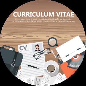 Curriculum vitae w języku holenderskim (CV)